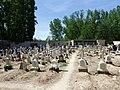 Cementerio de Berlangas de Roa 01.jpg