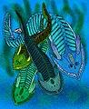 Cephalaspis species.jpg