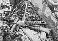 CfO0048 Dyrehodestolper Løvehodet Hundehodet etc. i gravkammerets SØ-del. Utgravningen Oseberg 24.08.1904 Kulturhistorisk museum UiO Oslo Norway (CC BY-SA 4.0).jpg