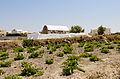 Chapel St Marina near Megalochori - Santorini - Greece - 04.jpg