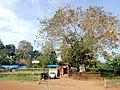Chapparam Bhagavathi temple, Manathana.jpg