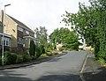 Cheviot Way - Hopton Hall Lane, Upper Hopton - geograph.org.uk - 889682.jpg