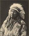 Chief American Horse.jpg