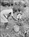 Children of Lawson Mayo break up coal for the kitchen range. Mullens Smokeless Coal Company, Mullens Mine, Harmco... - NARA - 540973.tif