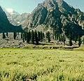 Chitral, Northern Pakistan.jpg