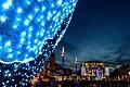 Christmas in Montpelier (31475899437).jpg