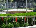 Christopher Columbus Monument Arrigo Park Chicago 2020-2128.jpg