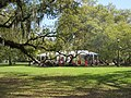 City Park New Orleans 11 March 2018 25.jpg