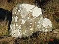 Clach na Ciplich - geograph.org.uk - 347688.jpg