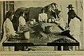 Coffee (1909) (20040853683).jpg