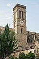 Colegiata basilica de santa maria.JPG