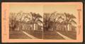 Colleges, back compound, by Leander Baker.png
