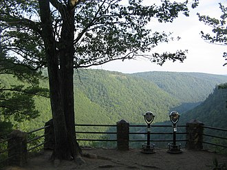 Colton Point State Park - CCC-built overlook looking south into the Pine Creek Gorge in Colton Point State Park