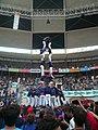 Concurs de Castells 2010 P1310322.JPG