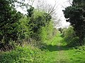 Corpusty - Adams Lane turns into footpath - geograph.org.uk - 1257343.jpg