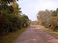 Costanera Sur Ecological Reserve 002.jpg