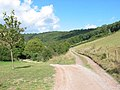 Country road near Redbrook - geograph.org.uk - 88736.jpg
