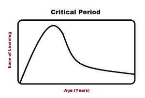 Critical period - Critical period graph