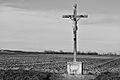 Croix-rurale Les-Fosses 03-02-2015 2 NB.jpg