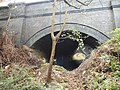 Cromer Railway Tunnel, 27 November 2015 (3).JPG