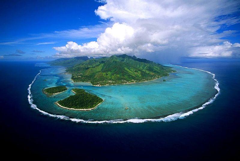 File:DSC00031 French Polynésia Mooréa Island (8044046451).jpg