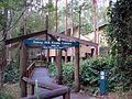 Daisy Hill Koala Centre, Queensland, Australia.jpg