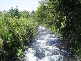 The Dan River in the Hule Plain