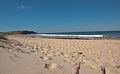 Dee Why Beach (5652796918).jpg