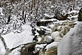 Deep-ravine-winter-waterfall - Virginia - ForestWander.jpg