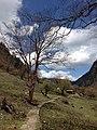 Deqen, Yunnan, China - panoramio (41).jpg