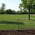 Der riesige Sportplatz der Alfred-Delp-Schule - panoramio.jpg