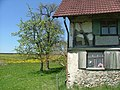 Detail am alten Haus - panoramio.jpg