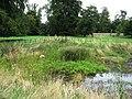 Dew Pond - Wandlebury - geograph.org.uk - 1146221.jpg