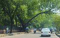 Dhaka in spring.jpg