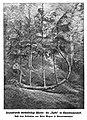 """Die """"Harfe"""" bei Ehrenfriedersdorf (Die Gartenlaube, 1901, Halbheft 26, Titelblatt Bild).jpg"""