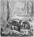 Die Gartenlaube (1869) b 631.jpg