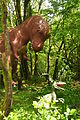 Dinosaur sculptures at Dan yr Ogof (9070).jpg