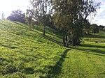 Disc golf Louvain-la-Neuve - Hole 7 - panoramio.jpg