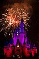 Disneyworld fireworks - 0207.jpg