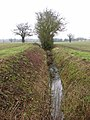 Ditch in field north of Gull Lane - geograph.org.uk - 1724033.jpg