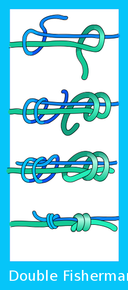 Double Fisherman's knot.svg