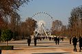 Down the Jardin des Tuileries towards Palace De La Concorde, Paris.jpg