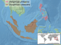 Dryophiops sp. distribution.png