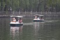 Duck boats (2612875458).jpg
