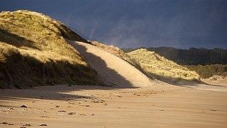 Dune formation, Ravensheugh Sands (geograph 2740445).jpg