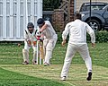 Dunmow CC v Brockley CC at Great Dunmow, Essex, England 25.jpg