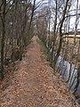 Duvenstedter Brook Grenzwall 1.jpg