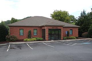 East Ellijay, Georgia City in Georgia, United States