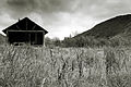 East Fork Cabin-Timeless (5728250350).jpg