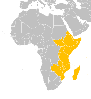 East Africa Eastern region of the African continent